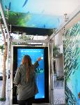 Bus Shelter - Screen Interaction